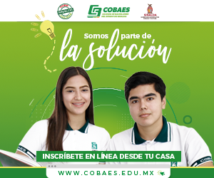 COBAES INSCRIPCION DESDE CASA